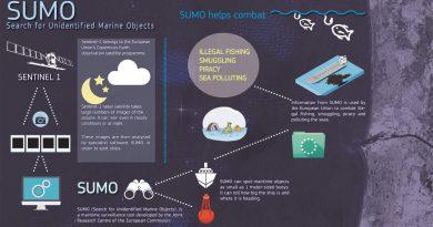 sumo navires