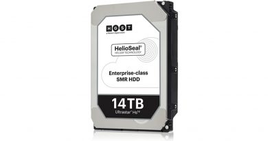 western digital HGST Ultrastar HS14